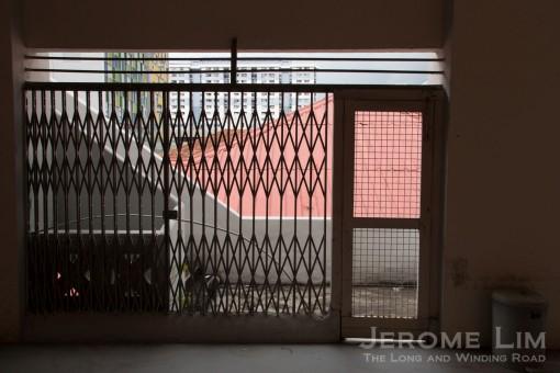 JeromeLim-5721
