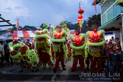 Lion dancers welcoming visitors.