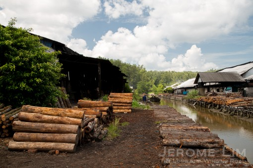 Another view of the factory. Logs are stripped of their barks in the area where they are unloaded from boats that bring them in from the nearby mangrove forest.