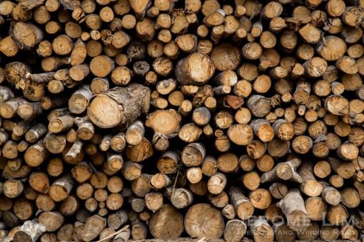 Logs of various diameters.