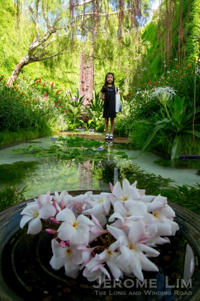 My Favourite Landscape Show Garden   The Treasure Box By Inch Lim Of  Malaysia.