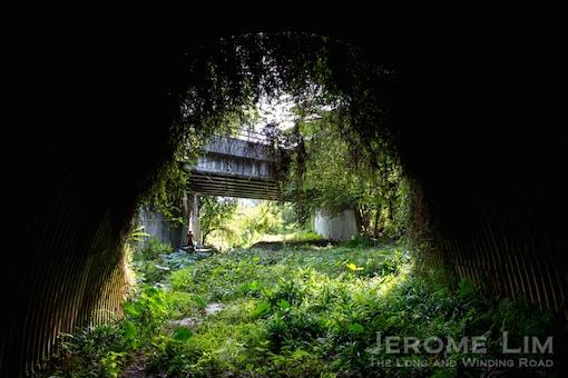 jeromelim-1785