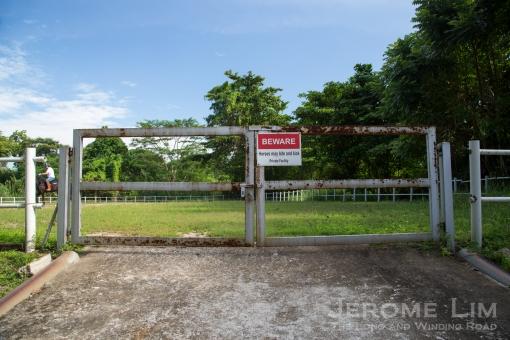 JeromeLim-3363.jpg