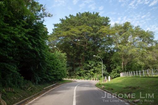 JeromeLim-3368