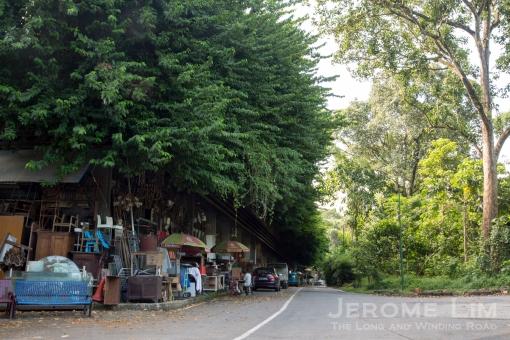 JeromeLim-3380