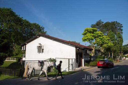 JeromeLim-3471