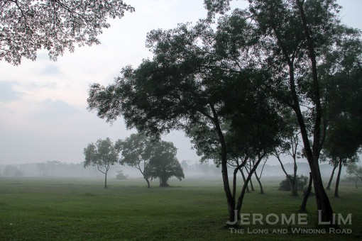 jeromelim-2827