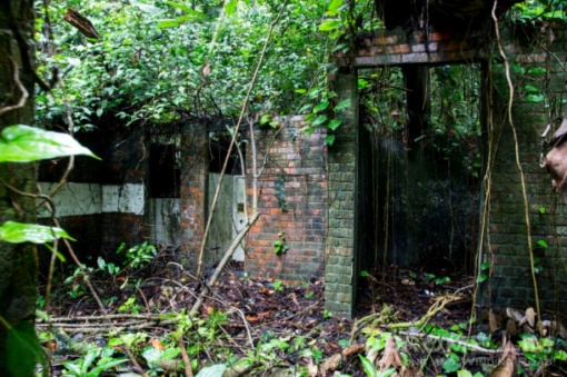A red brick structure in the forest.