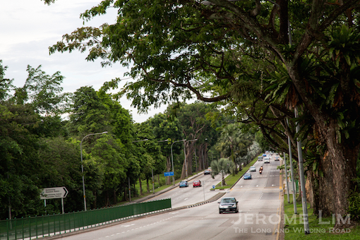 A beautiful stretch of Sembawang Road near its 11th milestone that recalls a rural past will soon have a very different and much more urban feel to it.