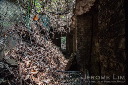jeromelim-5097