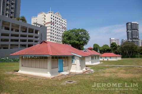 JeromeLim-3559